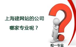 上海建网站的公司.jpg